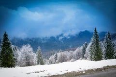 Vinter i Brasov Rumänien arkivfoton