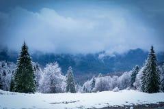 Vinter i Brasov Rumänien fotografering för bildbyråer