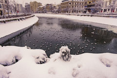 Vinter i Bucharest Royaltyfri Foto
