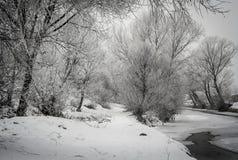 Vinter i bygd Royaltyfri Bild