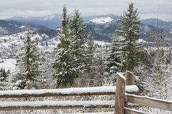 Vinter i Carpathian berg. Royaltyfri Foto