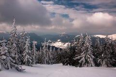 Vinter i Carphatians Royaltyfri Foto