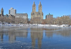 Vinter i Central Park. Manhattan. New York. Royaltyfri Fotografi