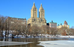 Vinter i Central Park. New York. Royaltyfri Fotografi