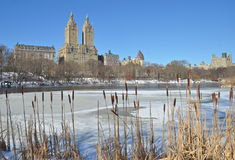 Vinter i Central Park. New York. Royaltyfri Bild