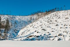 Vinter i de Tatra bergen royaltyfri foto