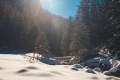 Vinter i de Tatra bergen arkivfoton