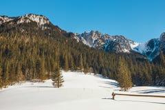 Vinter i de Tatra bergen arkivfoto