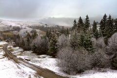 Vinter i de ukrainska Carpathiansna Royaltyfria Foton
