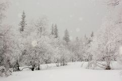 Vinter i de Ural bergen arkivfoton
