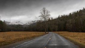 Vinter i den Cataloochee dalen, Great Smoky Mountains medborgaremedeltal Fotografering för Bildbyråer