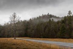 Vinter i den Cataloochee dalen, Great Smoky Mountains medborgaremedeltal Arkivbild