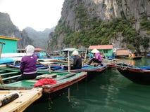 Vinter i den Halong fjärden, Vietnam, Asien Arkivfoto