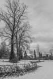 Vinter i den Vancouver staden Arkivfoton