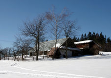 Vinter i denSilesian regionen för berg Royaltyfria Bilder