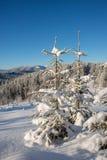 Vinter i dolda berg för skog Arkivfoto