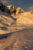 Vinter i höga Tatras Royaltyfria Bilder