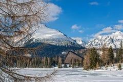 Vinter i höga Tatras berg Arkivfoto