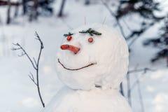 Vinter i höga Tatras berg Royaltyfri Foto
