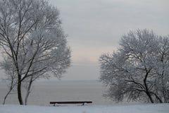 Vinter i havet Fotografering för Bildbyråer
