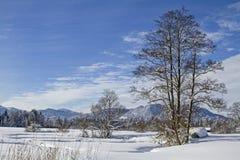 Vinter i Isarwinkel nära dåliga Toelz royaltyfria bilder