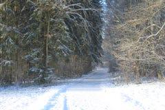 Vinter i Luxembourg Arkivfoto