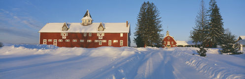 Vinter i New England Royaltyfri Foto
