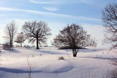 Vinter i nordliga Wisconsin Royaltyfria Bilder