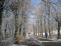 Vinter i Padiham Lancashire Arkivfoto