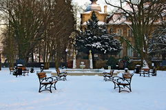 Vinter i parkera. Royaltyfri Foto