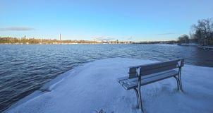Vinter i parkera Royaltyfria Foton