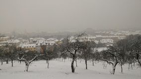 Vinter i Prague Royaltyfri Bild