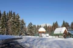 Vinter i Predeal Royaltyfria Foton