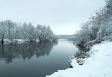 Vinter i regn royaltyfri foto