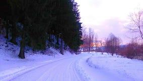 Vinter i Rumänien 3 Royaltyfri Bild
