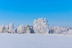 Vinter i Ryssland Arkivfoton