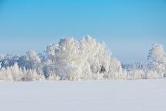 Vinter i Ryssland Royaltyfria Foton