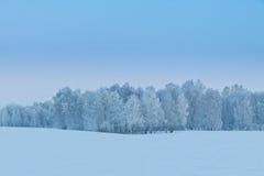 Vinter i Ryssland Royaltyfria Bilder