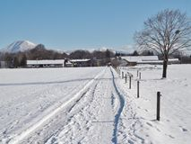 Vinter i Salzburg, Österrike, Europa Royaltyfri Bild
