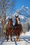 Vinter i schweiziska alps Royaltyfria Foton