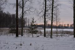 Vinter i Sverige Arkivfoto