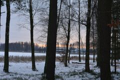 Vinter i Sverige Arkivbilder