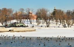 Vinter i Tsaritsyno i Moscow Royaltyfria Foton