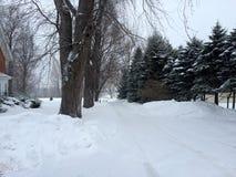 Vinter i Westfield Royaltyfri Fotografi