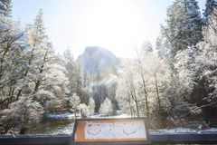 Vinter i Yosemite royaltyfria foton