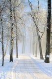 Vinter kall dag Arkivfoto