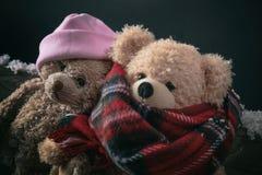 Vinter kallt väder, förälskelse Koppla ihop nallebjörnar som sitter på en snöad bänk, closeupsikt royaltyfria bilder