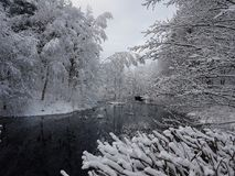Vinter lake Royaltyfria Foton