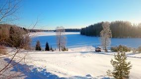 Vinter lake Royaltyfria Bilder