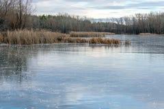 Vinter landskap is-täckte sjö och träd härlig molnig sky royaltyfria foton